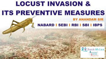 Essay on Locust Invasion in India
